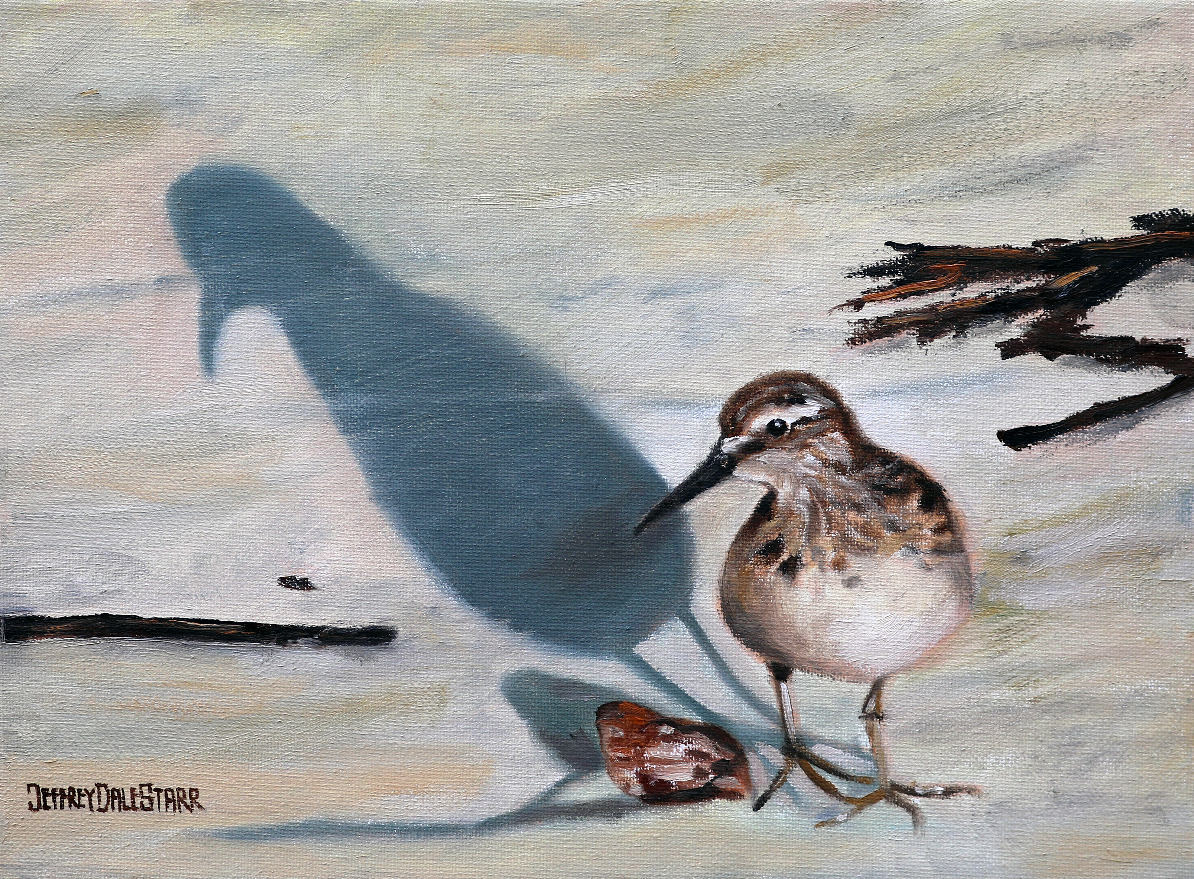 oil painting of sandpiper and shell on cape cod beach by american artist jeffrey dale starr