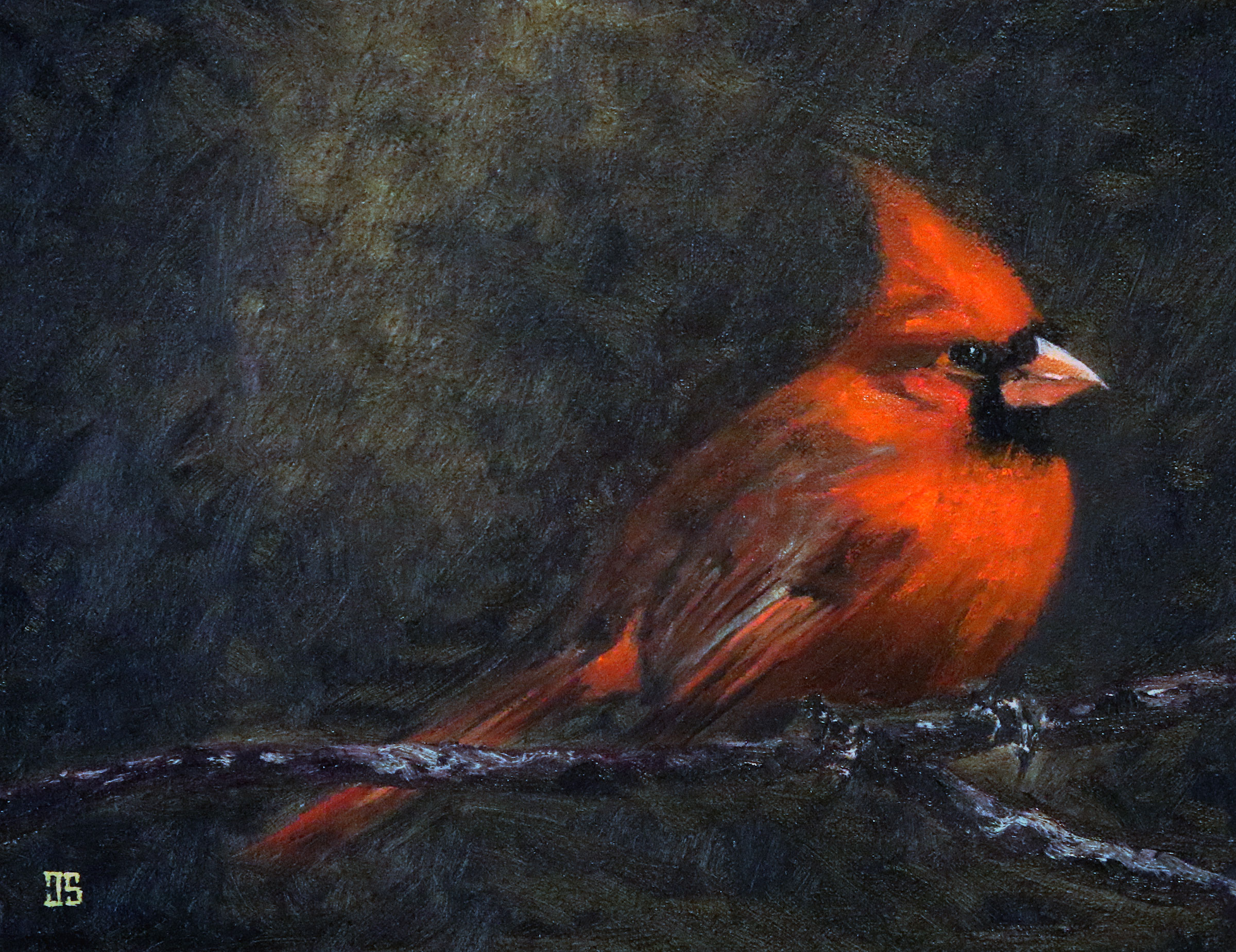 Oil painting of Birds of Cape Cod Northern Cardinal by Jeffrey Dale Starr