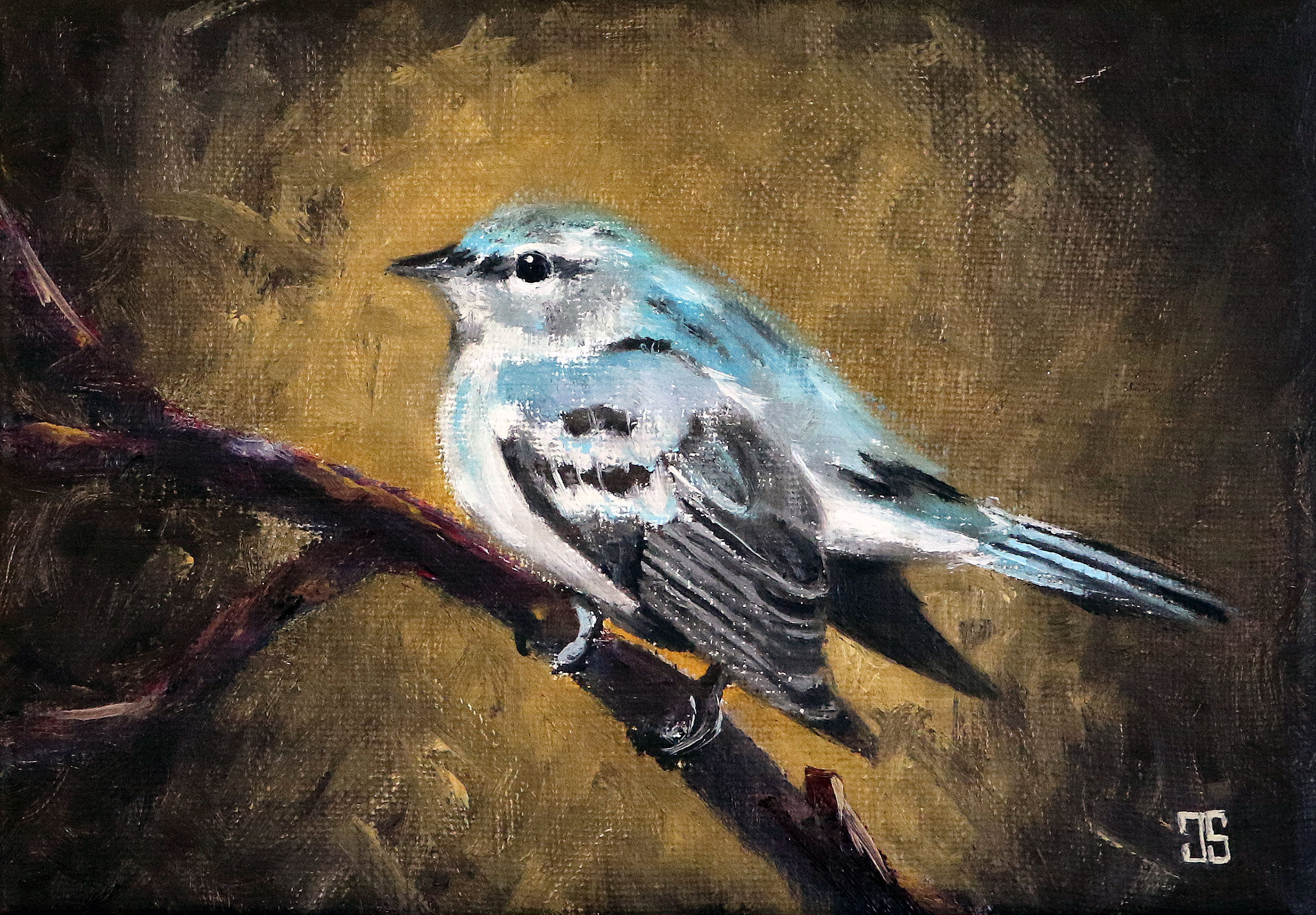Oil painting of birds of cape cod cerulean warbler by Jeffrey Dale Starr