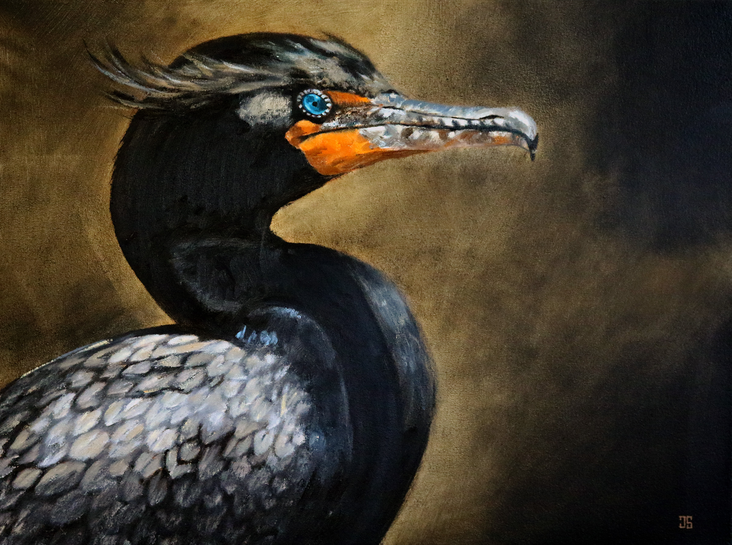 Oil painting of Birds of Cape Cod Double Crested Cormorant by Jeffrey Dale Starr