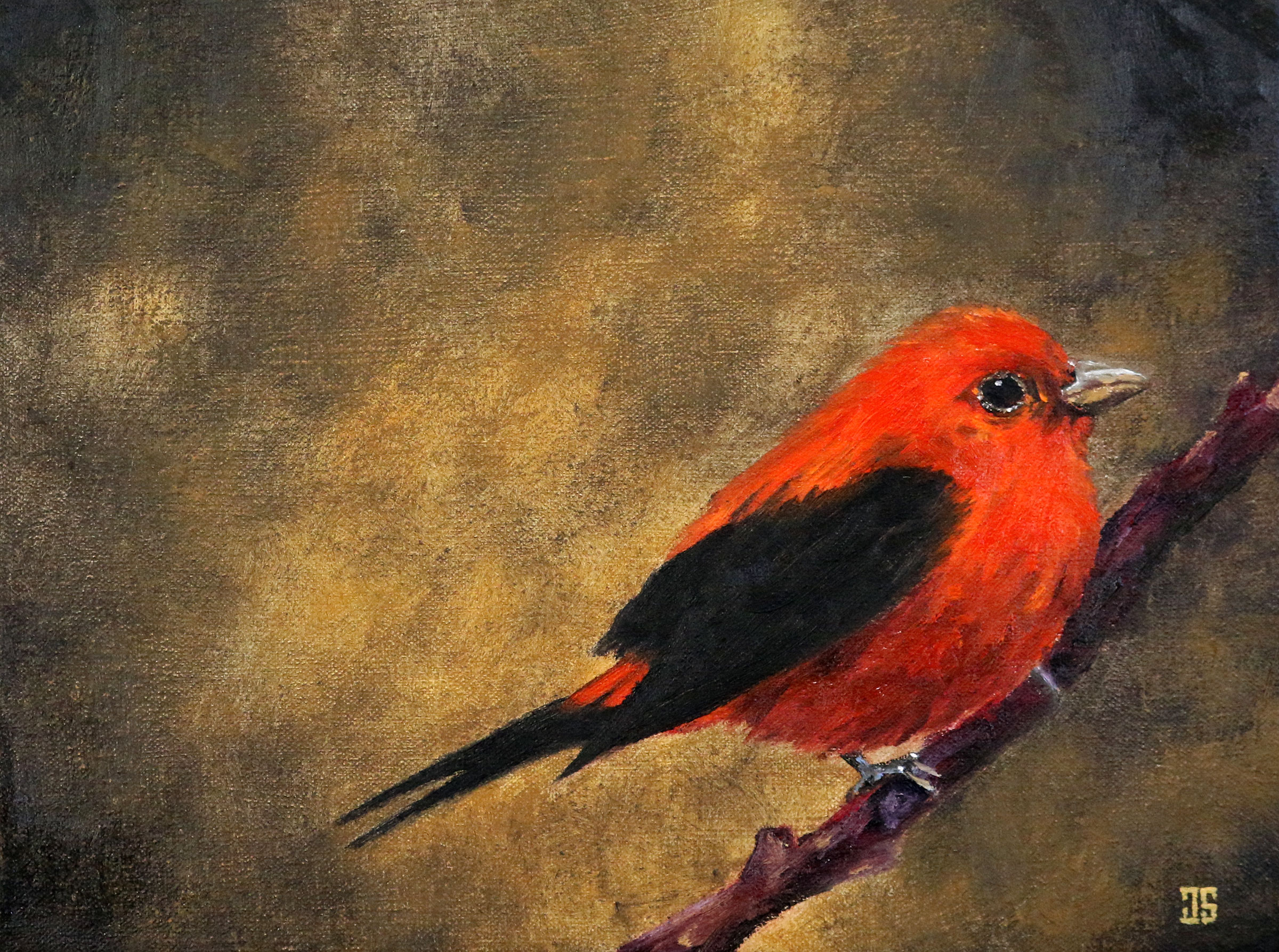 Oil painting of birds of Cape Cod Scarlet Tanager for Geoffrey Keyser Mawby by Jeffrey Dale Starr