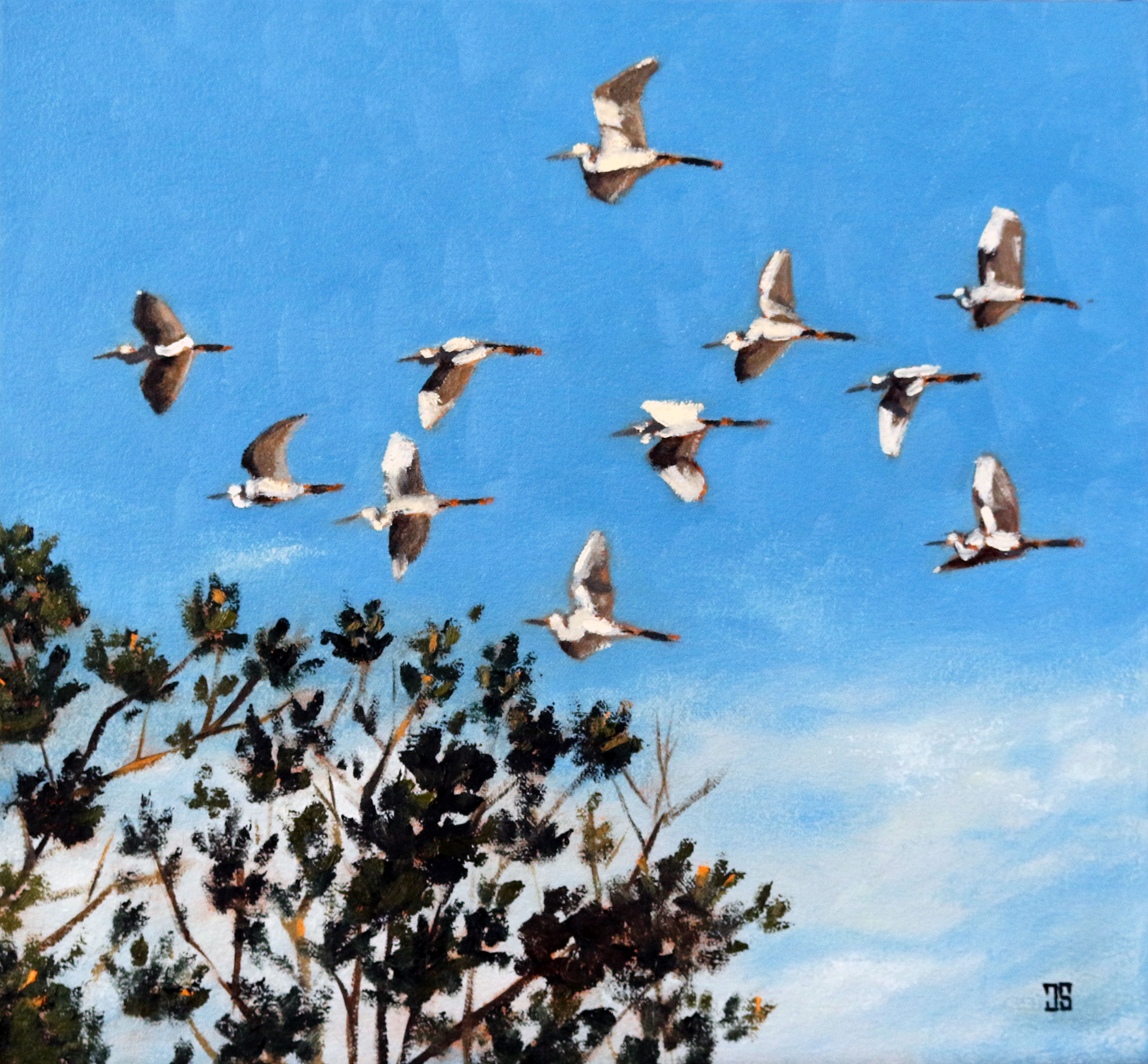 Oil painting of great egrets in flight by American artist Jeffrey Dale Starr