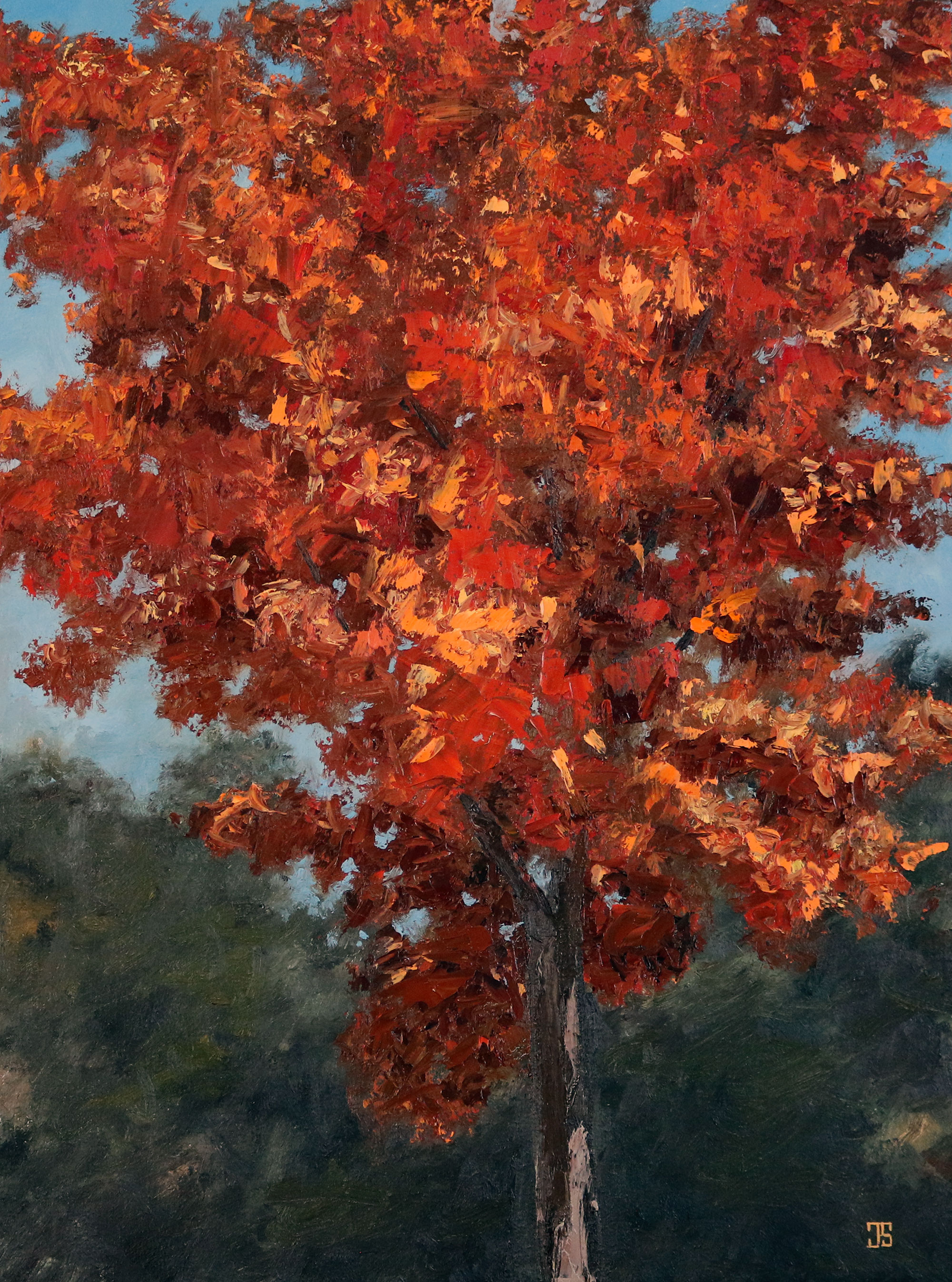 Oil painting of red tree on cape cod by American artist Jeffrey Dale Starr