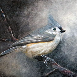 Oil Painting of Birds of Cape Cod Tufted Titmouse by Jeffrey Dale Starr