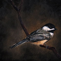 Oil painting of Birds of Cape Cod Black Capped Chickadee by Jeffrey Dale Starr