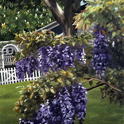 Oil painting of wisteria in Osterville Cape Cod MA by Jeffrey Dale Starr