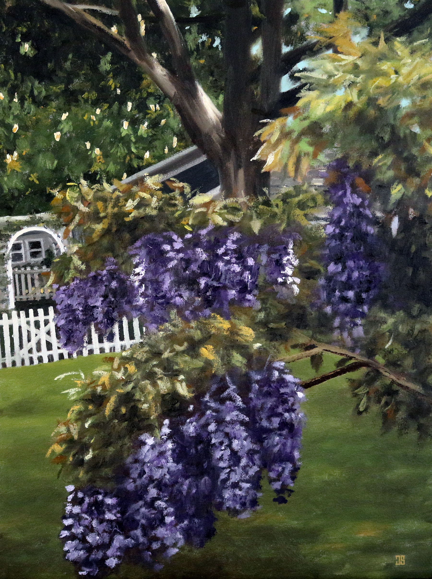 Wisteria in Osterville by Jeffrey Dale Starr